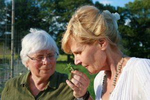 Heather and Ann smelling fresh herbs in garden