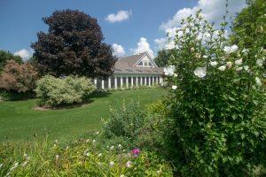 View of house through garden
